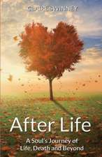 After Life:  A Soul's Journey of Life, Death and Beyond