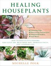 Healing Houseplants: How to Keep Plants Indoors for Clean Air, Healthier Skin, Improved Focus, and a Happier Life!