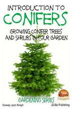 Introduction to Conifers - Growing Conifer Trees and Shrubs in Your Garden