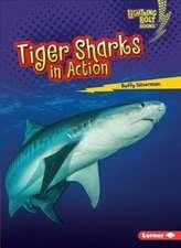 Tiger Sharks in Action Tiger Sharks in Action