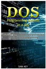 DOS Programming Success in a Day