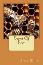 Boxes of Bees