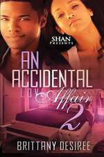 An Accidental Love Affair 2