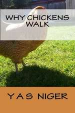 Why Chickens Walk
