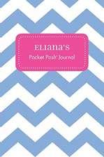 Eliana's Pocket Posh Journal, Chevron