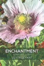 Enchantment: Coming Back to Life