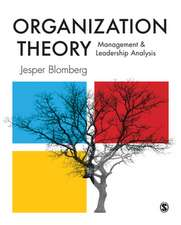 Organization Theory: Management and Leadership Analysis