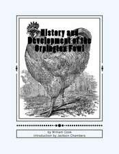 History and Development of the Orpington Fowl