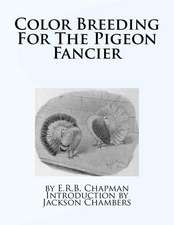 Color Breeding for the Pigeon Fancier