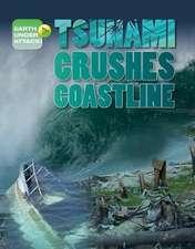 Tsunami Crushes Coastline