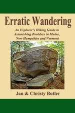 Erratic Wandering