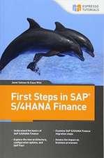 First Steps in SAP S/4hana Finance