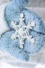 A Silver Snowflake Ornament Journal