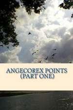 Angecorex Points (Part One)