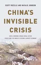 China's Invisible Crisis