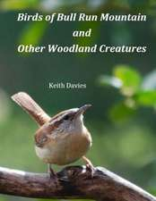 Birds of Bull Run Mountain and Other Woodland Creatures