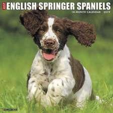 2019 Just English Springer Spaniels Wall Calendar (Dog Breed Calendar)
