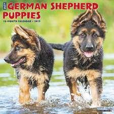 2019 Just German Shepherd Puppies Wall Calendar (Dog Breed Calendar)