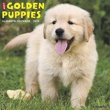 2019 Just Golden Puppies Wall Calendar (Dog Breed Calendar)