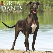 2019 Just Great Danes Wall Calendar (Dog Breed Calendar)