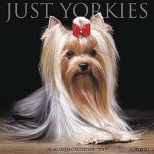 2019 Just Yorkies Wall Calendar (Dog Breed Calendar)