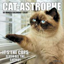 CATASTROPHE 2020 MINI WALL CALENDAR