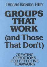 Groups That Work (and Those That Don′t): Creating Conditions for Effective Teamwork