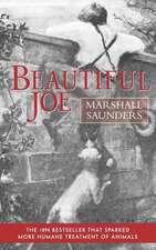 Beautiful Joe (Paperback)