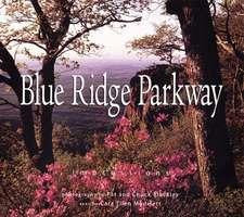 Blue Ridge Parkway:  Impressions