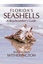 Florida's Seashells