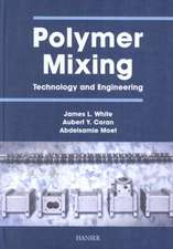 Polymer Mixing:  Technology and Engineering