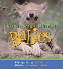 Northwest Animal Babies