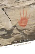 Pictograph:  Poems