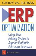 Erp Optimization:  Using Your Existing System to Support Profitable E-Business Initiatives