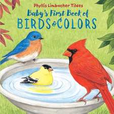 Baby's First Book of Birds & Colors
