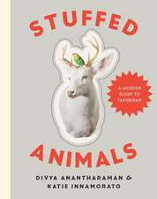 Stuffed Animals – A Modern Guide to Taxidermy