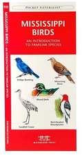 Mississippi Birds:  A Folding Pocket Guide to Familiar Species