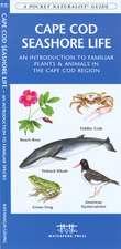 Cape Cod Seashore Life:  An Introduction to Familiar Plants & Animals in the Cape Cod Region