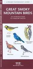 Great Smoky Mountain Birds:  An Introduction to Familiar Species