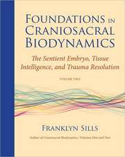 Foundations in Craniosacral Biodynamics, Volume Two