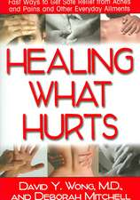 Healing What Hurts:  Fast Ways to Get Safe Relief from Aches and Pains and Other Everyday Ailments