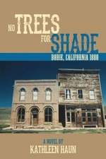 No Trees for Shade:  Bodie, California