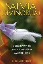 Salvia Divinorum: Doorway to Thought-Free Awareness