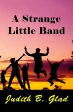 A Strange Little Band:  Shapes, Colors, Counting