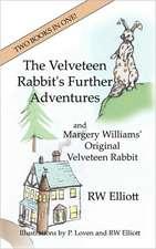 The Velveteen Rabbit's Further Adventures
