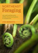 Northeast Foraging:  120 Wild and Flavorful Edibles from Beach Plums to Wineberries