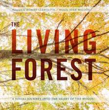 The Living Forest