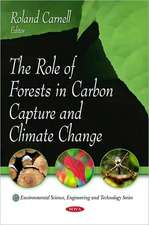 Role of Forests in Carbon Capture and Climate Change