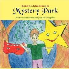Sonny's Adventure in Mystery Park