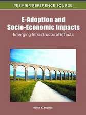 E-Adoption and Socio-Economic Impacts